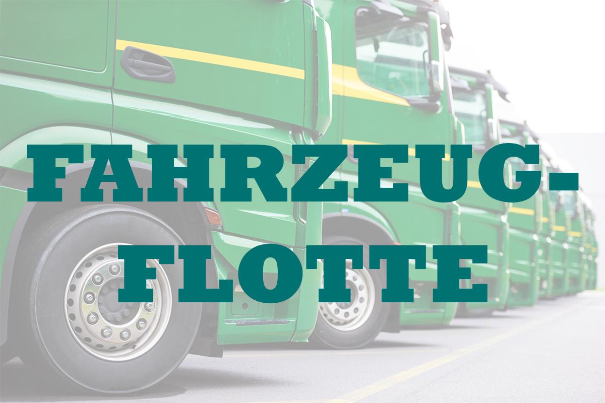 Fahrzeugflotte_Fahrzeugbeschriftung_Weyhe_Werbung_2